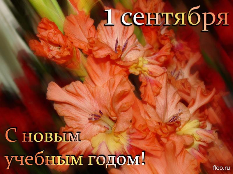 Поздравления учителям с 1 сентября